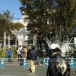 博多駅イルミネーションの準備始まる
