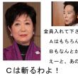 大義なき戦い 永田町死闘篇