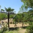 (楽書き雑記「新居へ引っ越しのため、当分見られなくなります=名古屋・東山動物園のイケメンゴリラ・シャバーニ家族とチンパンジーたち」