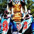 新居浜祭り(上部地区山根グラウンド統一寄せ)(その2)