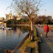 大濠公園 No.5   (中央区)
