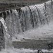 北郷を流れる広渡川の水も澄んでいて冷たそうでした。( No.14126)
