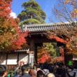 永観堂の紅葉2017.11.23