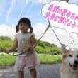 岐阜県想定外の雨と土砂流入~・・・怪しそうなフレコンバックも・・・山の中の廃棄物