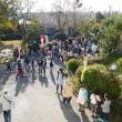 地域の祭典 「桜木まつりin 2018」