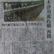 八幡『流れ橋』≪再開≫の記事を見て。。♬(想い出)