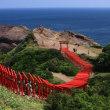 日本海に伸びる朱塗りの鳥居