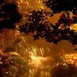 2681 黄金色の滝