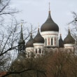 大聖堂のドーム屋根