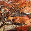 富士山麓の晩秋