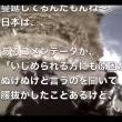 これは面白い動画です!「イジメの構造」と「イジメに勝つ方法」を天才天界が暴く♪