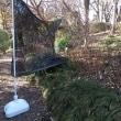 板橋区立赤塚植物園の「シモバシラ」
