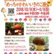 めっちゃかわいい★きのこ展 in 能登川博物館