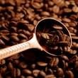 幻のルアクコーヒー