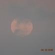 その4 黄色い満月の海からの月の出