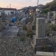 墓地! やはり、来た形跡なし(p_-)