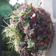 秋の寄せ植えリース