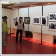 橋本市民大学いきいき学園写真クラブ