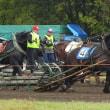 馬のお祭り Riding  ground