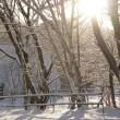 大雪になる