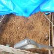 もみ殻堆肥を切り返しました