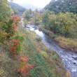 秋の先取り 北海道