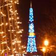 クリスマスライブ@札幌ハレラウンジオハナ♪