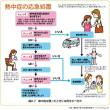 熱中症の応急処置等について