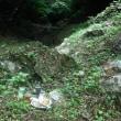 6・23沖縄戦慰霊の日/北部の戦場