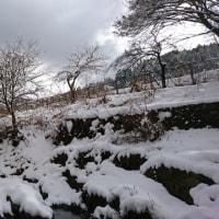 雪かき終了~(((^^;)