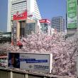 中野駅8番ホームより。