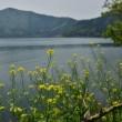 琵琶湖湖岸の風景