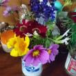 なけなしの花