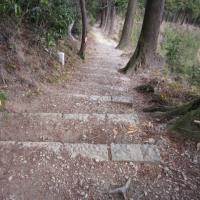 h30.3.18  刈寄山へは急登、今熊山、今熊神社へは楽ちん (18日その2)