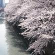 華やかな春の喜びに水を差す目黒川