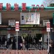 女性募集中~上野動物園 ナイトサファリ!~散策しながら、友活・恋婚しよう~