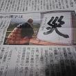 今年の漢字、災、