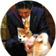◇【秋田犬の贈呈式】・・・・・・アリーナ・ザギトワ選手の顔ペロリとキッスしよろしくネ!!