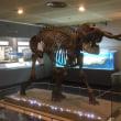 三浦半島の博物館