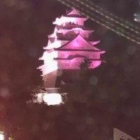 今夜の姫路城はピンク!
