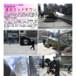散策 「東京中心部南 322」 東京ミッドタウン