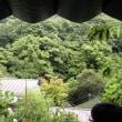梅雨入りの日に再度山荘へ