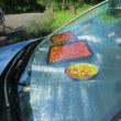 車のダッシュボードでセミドライトマトを作る♪