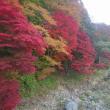 11月3日 上会津屋周辺の紅葉情報