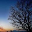 樹木と空です空倶楽部♪