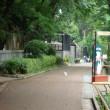 夢見ヶ崎動物公園  マッテ・クダサイ