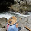 今日の鮎滝_170824