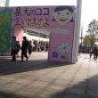埼玉県立大学清透祭