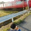 赤い電車を見に