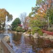 紅葉真っ盛りの府中公園